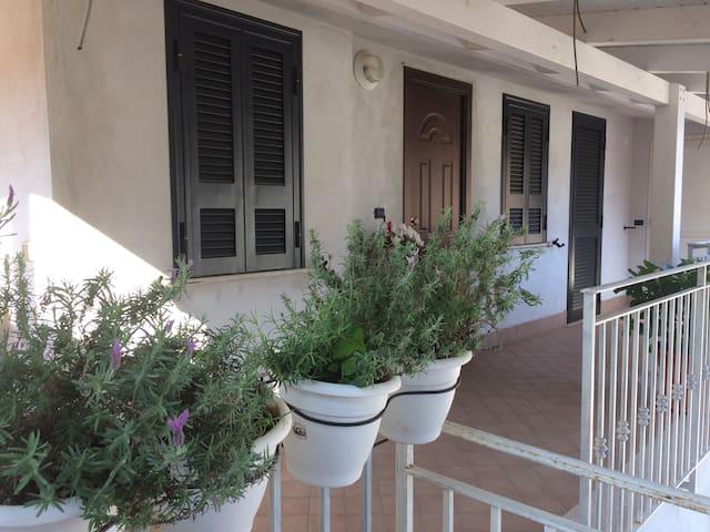 La Casa Delle Orchidee - San Felice a Cancello - Apartment