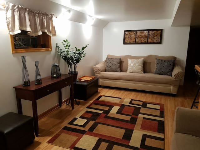 Beautiful Full Living Space near Midway Airport - Chicago