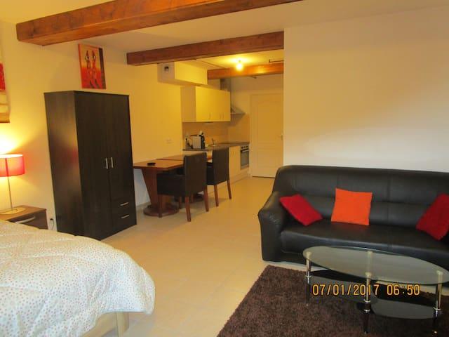 A louer par nuit, semaine, mois,tres jolie studio - Chauffailles - Apartemen