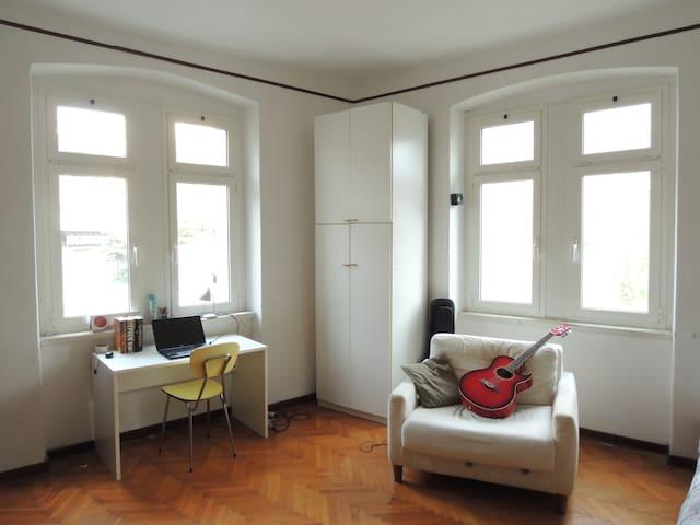 Spacious bright room with guitars - Trieste - Leilighet
