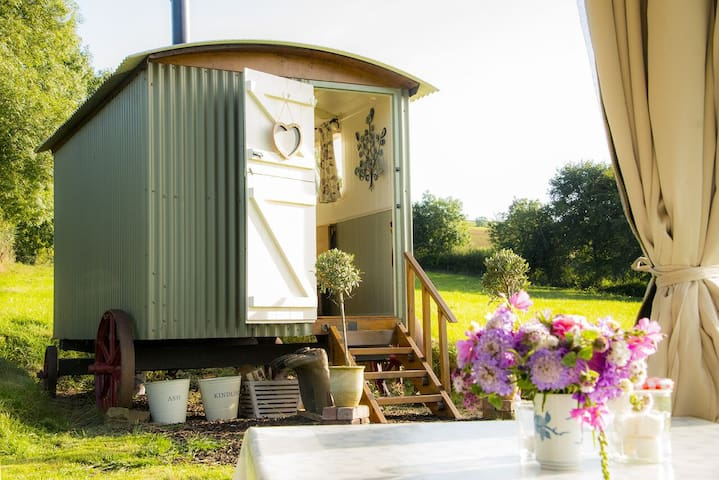 Bathsheba, Shepherd's Hut in meadow - Stockleigh Pomeroy - Cabana