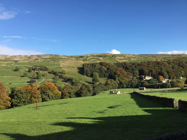 6 Swallowholm Cottages - North Yorkshire - Huis