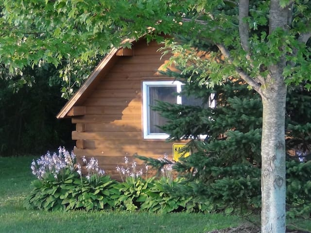 Rustic One Room Cabin - Covert - Chalet