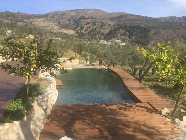 Charming eco finca in Olive grove - Blue bedroom - Lanjarón - Hus