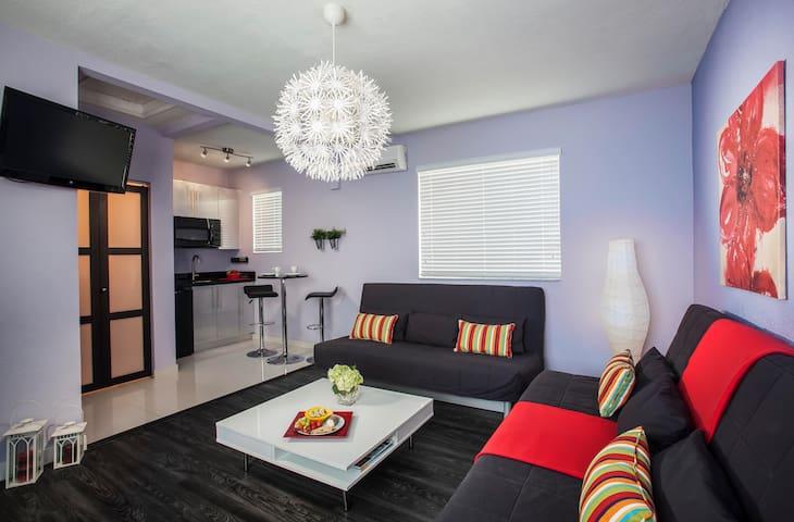 Miami Beach 1BR Modern Villa - マイアミビーチ - 別荘