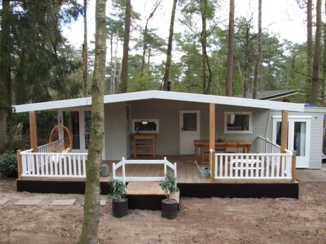 Summer house with large veranda and WiFi - Doornspijk - スイス式シャレー