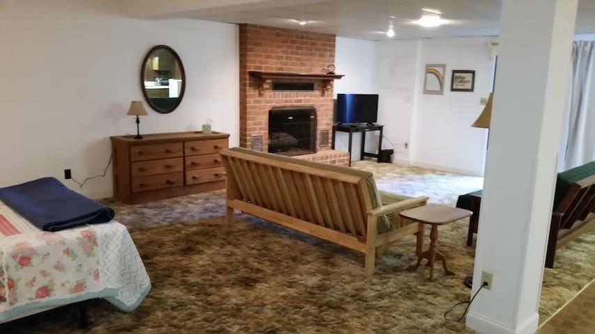Spacious one bedroom studio apartment - Hollins