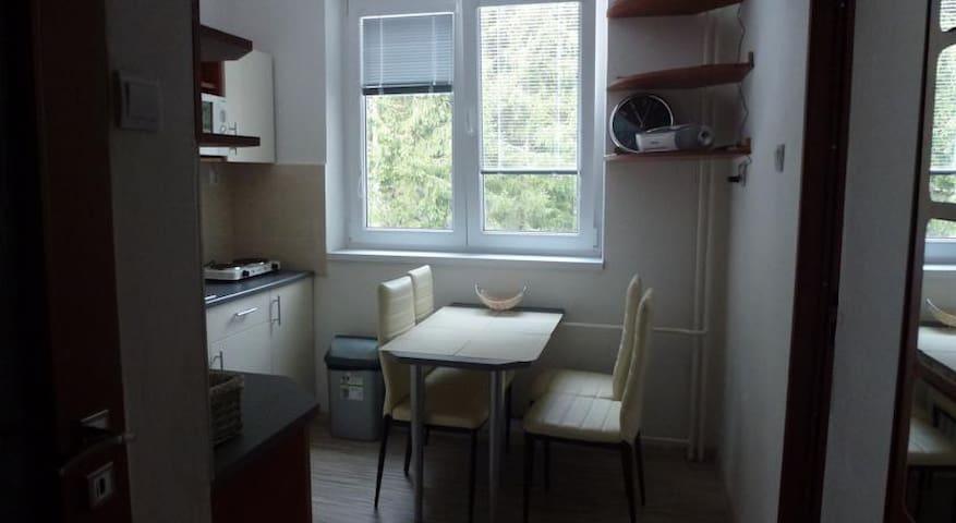 Apartman u Fera - Jasna - Demänovská Dolina - Apartamento