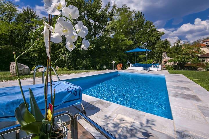 Villa Rupena with swimming pool - Buzet - 獨棟