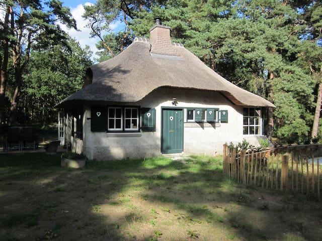 Nostalgisch huisje  in het bos - Zeegse - Rumah
