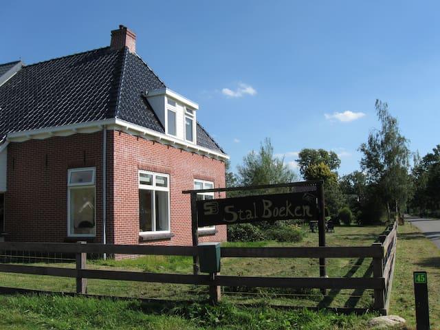 Horsefarm in frysian nature - Drachtstercompagnie - Ev