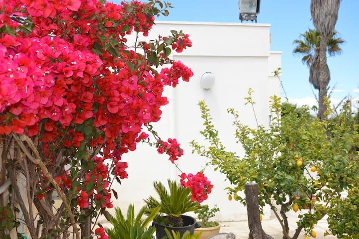 CASETTA FIOR DI LOTO Gallipoli - Galípoli - Villa