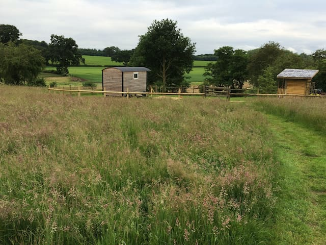 Shepherds Hut in rural Shropshire... - Pickstock - Maja