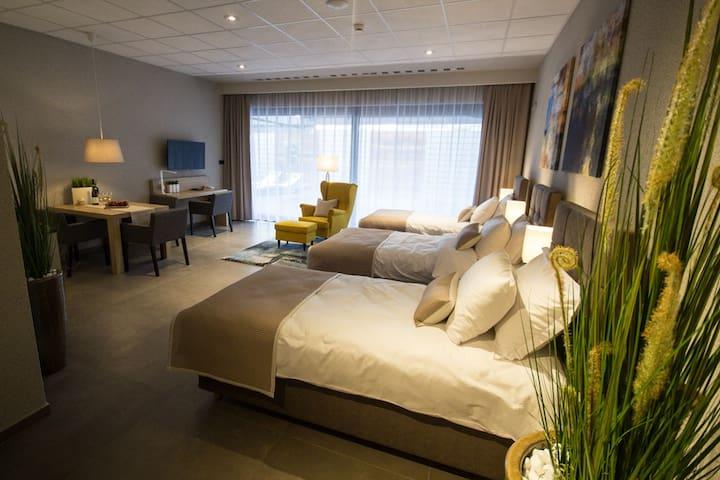 SportHotel & SPA Apartament Premium 2 - Gliwice - Leilighet