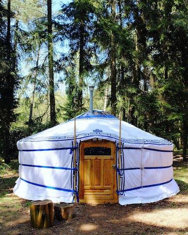 Back to basic Ger (Yurt) at Nature-camping site - Renkum - Yurta