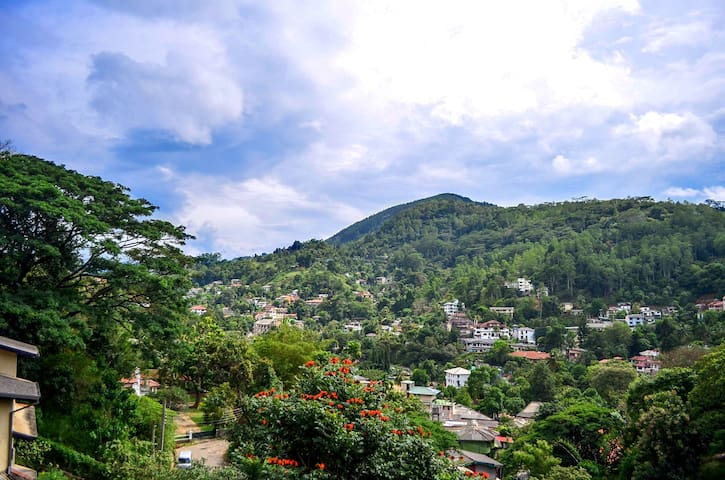 Villa Nine Kandy - Kandy - Dom
