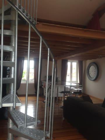 Loft pour l'Euro 2016 (tarif nuitée/4personnes) - Grigny - Loft