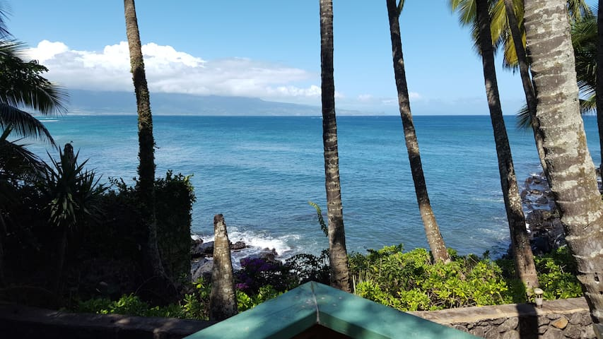 Paia Bay Cottage,  Licensed STPH (PHONE NUMBER HIDDEN) - Paia