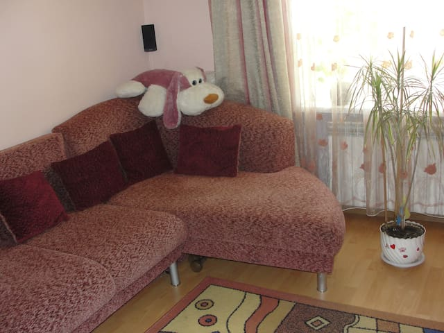 Big living room with free WIFI cent - Sokal