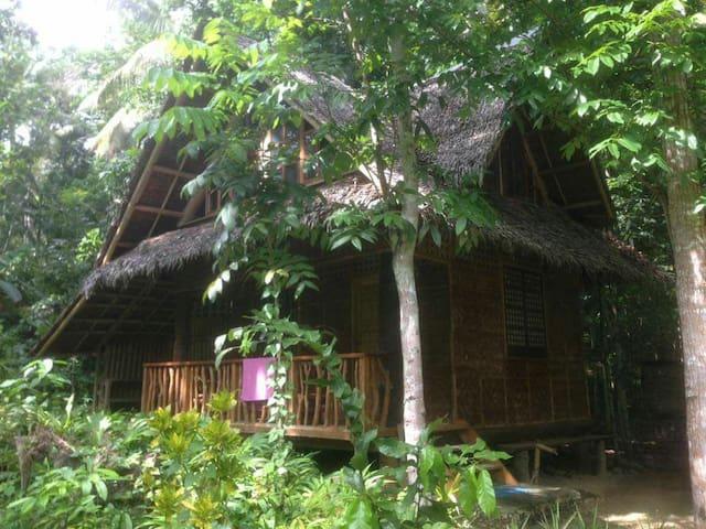 Riverside Native House - Loboc - Huis