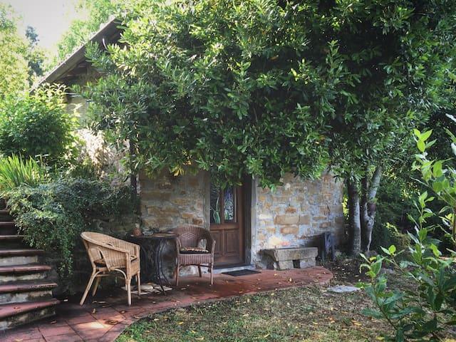 Cozy Restored Metato 1 BD house - Camporgiano - Hus