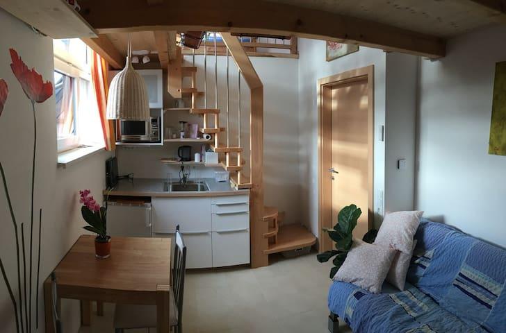 2-Zimmer-Appartment mit viel Liebe im Detail - Obereching - Departamento