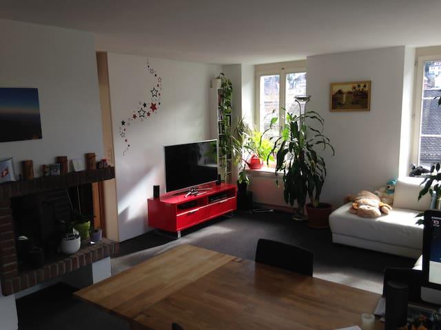 Schmucke Wohnung im Bäderquartier - Baden - Appartamento