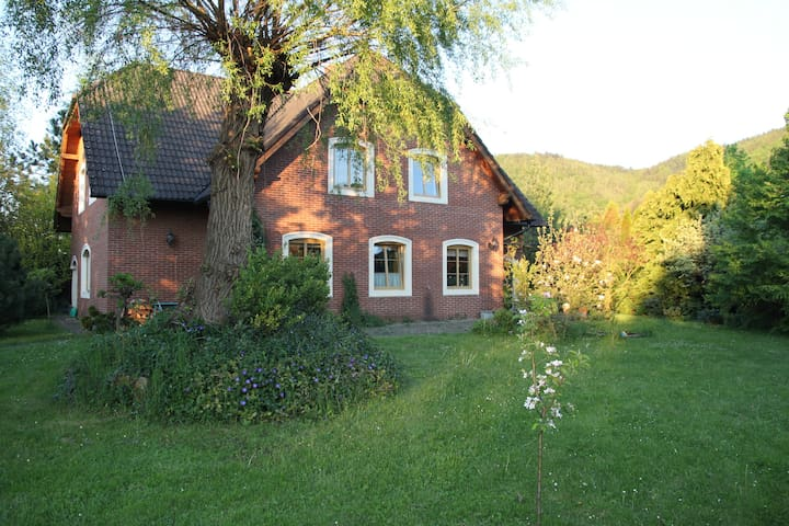 house with a soul near Prague - Všenory - Hus