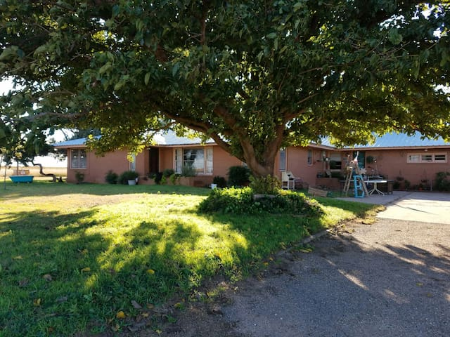Comfy, Quiet and Relaxed - Country Living 1BD - Plainview - Casa