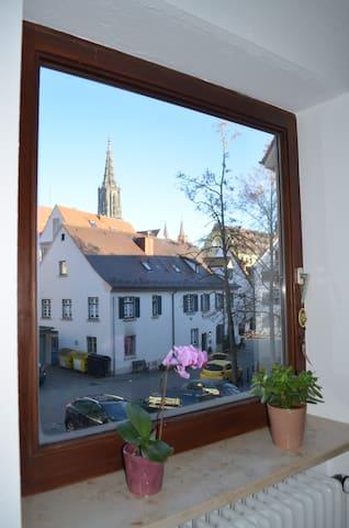 Schönes Zimmer mit Münsterblick im Fischerviertel - Ulm