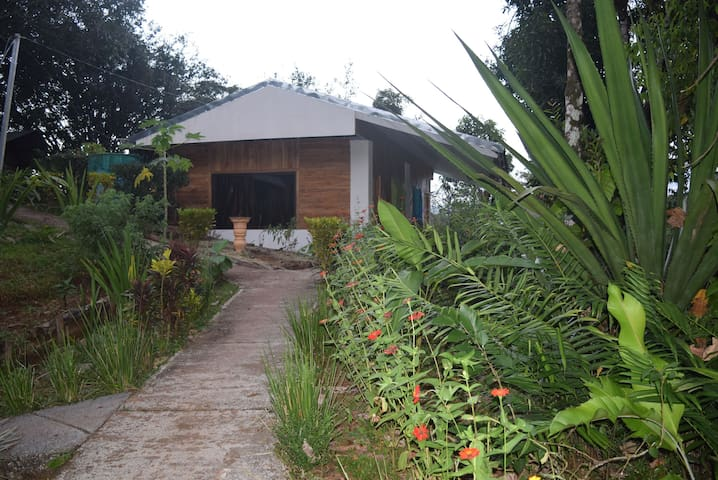 Mastatal Eco lodge / organic farm - Santiago de Puriscal