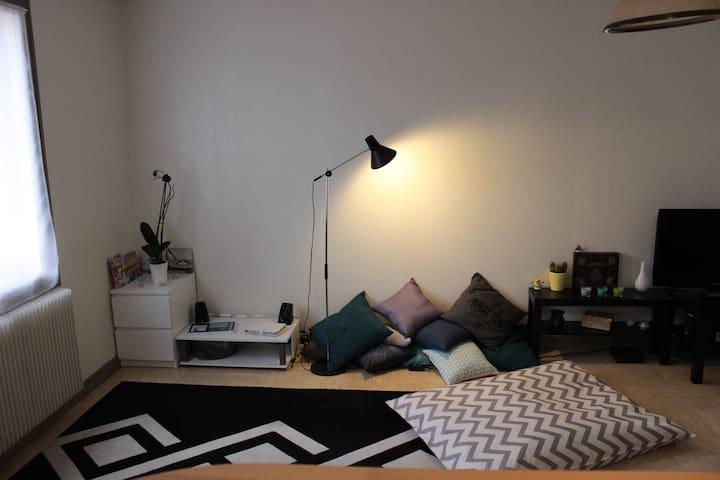 Chambre spacieuse en centre ville - Клермон-Ферран - Квартира