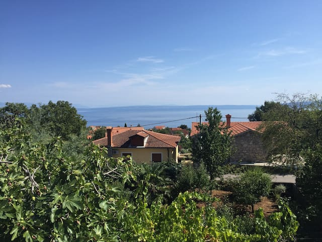 NEW Sunny Private Villa in Opatija, nice Seascape - Poljane - 別墅