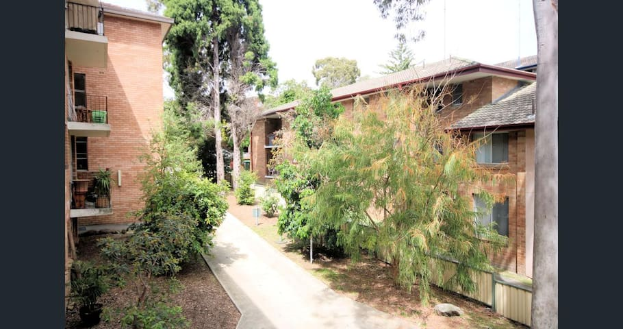 Cozy apartment next to the Station - Meadowbank - Daire