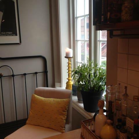 Stor moderne leilighet i idylliske omgivelser - Horten - Pis