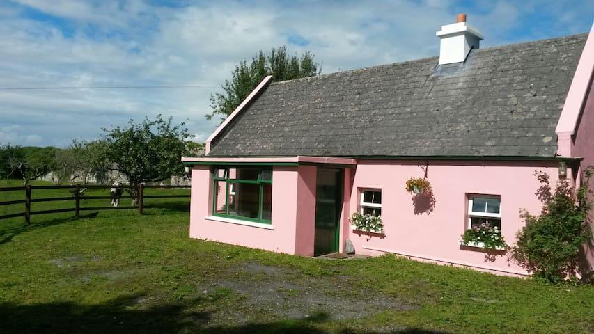 Private Irish farmyard cottage on Castle grounds - Kilcolgan - Casa