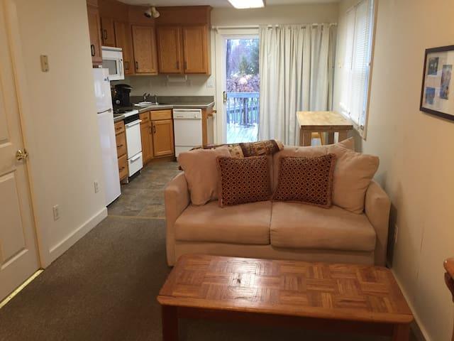 Cozy studio with kitchen - Springville