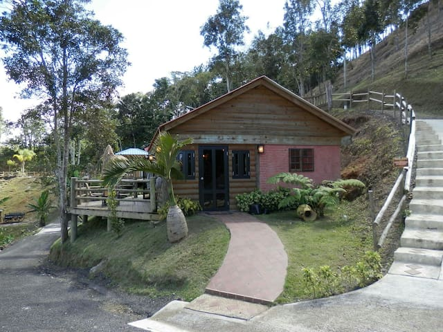 Rustic Log Cabins w/Pool Sleeps 1-6 - Orocovis - Kulübe