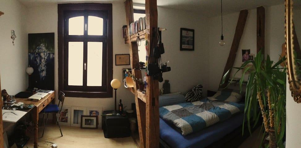 Cozy Vintage Room in Flatshare Appartment - Weimar - Apartament