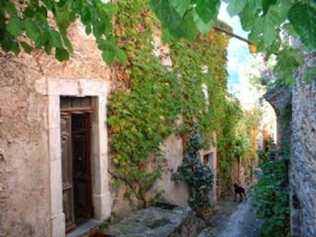 La maison d'Aimée - Vieussan - Rumah