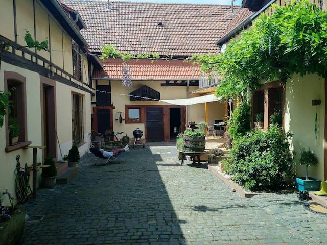 Schönes Apartment in traumhaftem Ambiente - Heuchelheim bei Frankenthal - Appartement