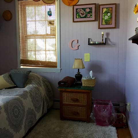 Charming small 15 minutes to JFK - Valley Stream - Hus