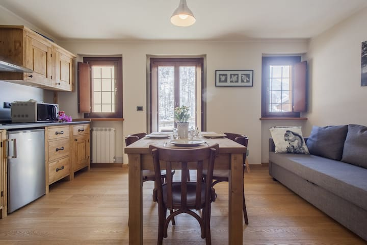 Pegaso -  Lovely and cozy flat with mountain view - Gressoney-La-Trinitè