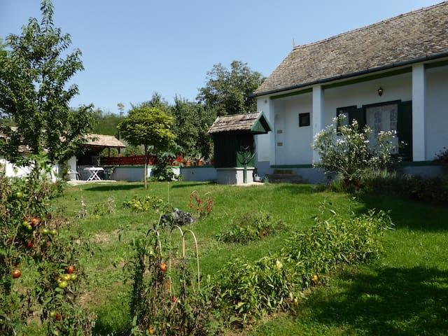 Wally Udvar vakantiewoning in zuid Hongarije - Kisnyárád - Casa