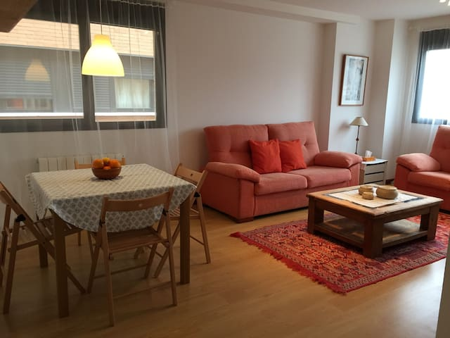 Charming bright apartment in Haro - Haro - Appartement