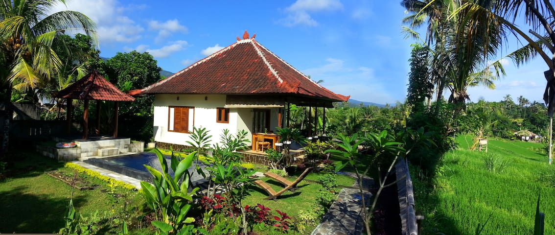 Closer to waterfalls,Relaxing place & private pool - Sukasada - Haus