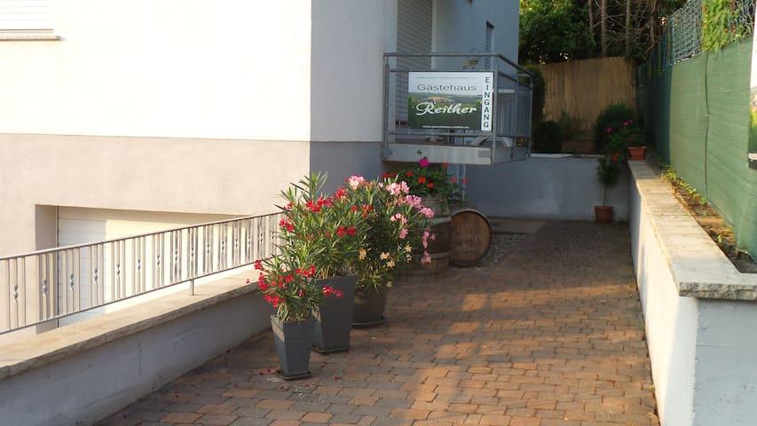 Gästehaus Reither - Schweigen-Rechtenbach - Overig