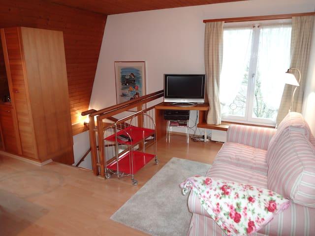Freundliche Wohnung im Zentrum Dietikon - Dietikon - Lägenhet
