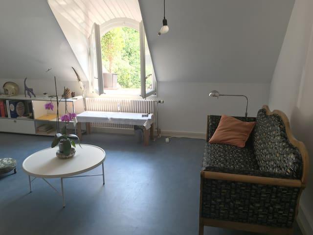 Studio close to center of Bern - Βέρνη - Διαμέρισμα