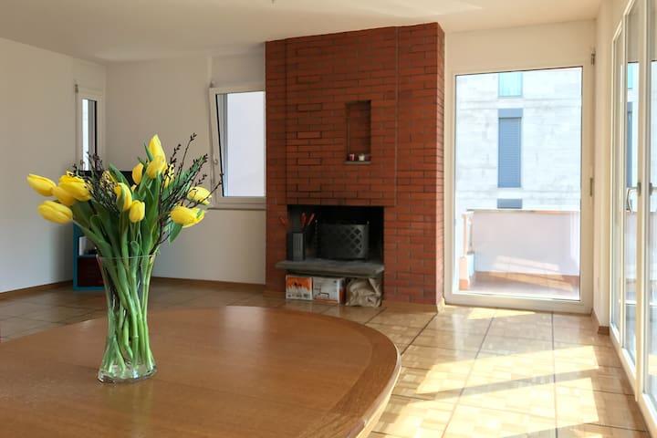 Camera singola a lugano - Lugano - Apartamento